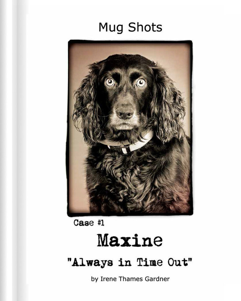 A humorous dog photography book by Irene.